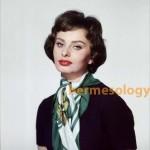 Sophia Loren scarf copy